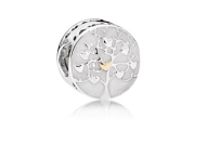 PANDORA - http://www.pandora.net/en-gb/products/charms/silver/792106en23